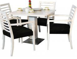 China dining furniture set
