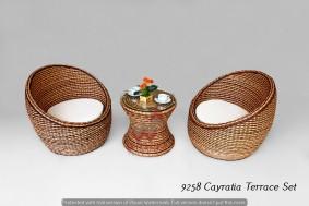 Cayratia Terrace rattan living set